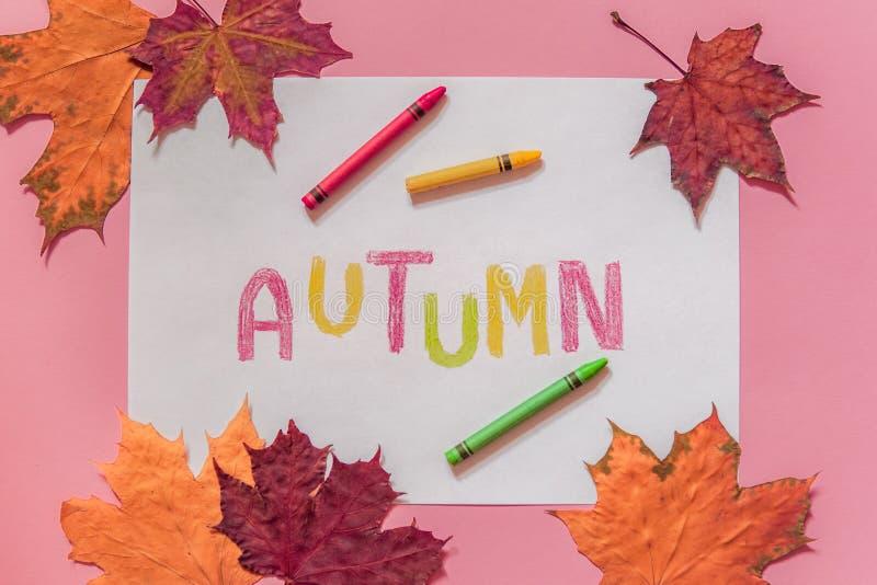Composizione in autunno con le foglie fotografia stock