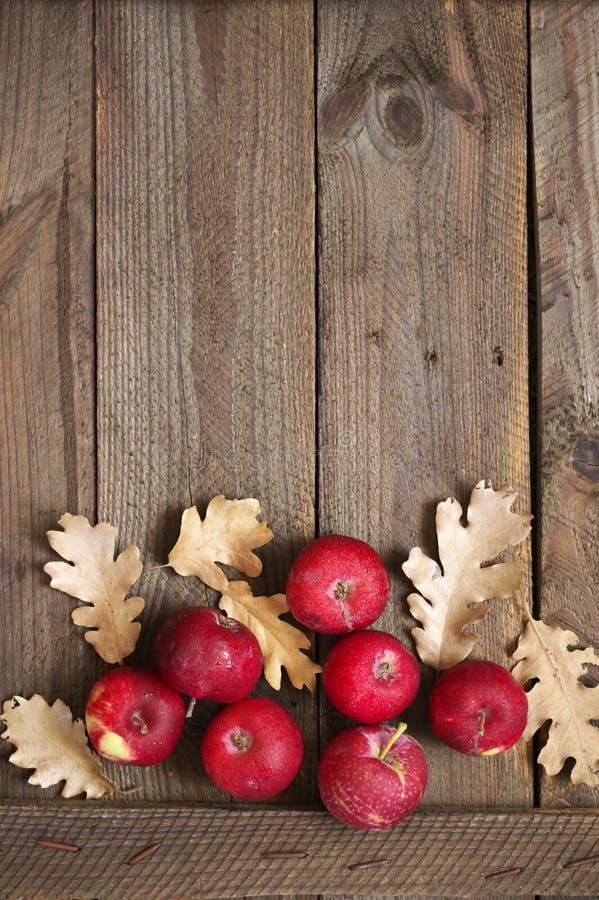 Composizione in autunno con le mele rosse fotografia stock