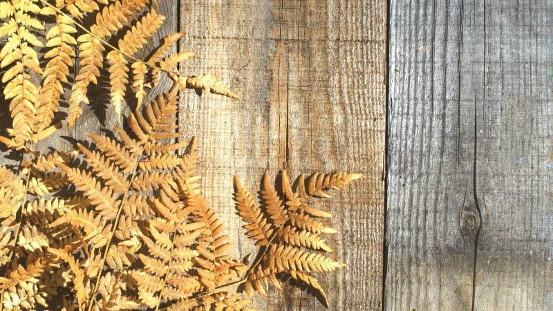 Composizione in autunno Pagina delle foglie asciutte di autunno su un fondo di legno Posto alla copia fotografie stock