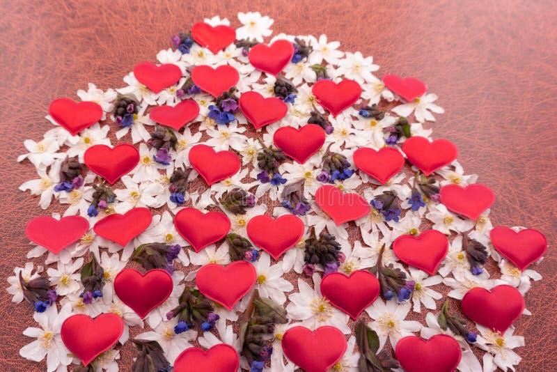 Composizione in autunno Simbolo del cuore fatto dei fiori e delle foglie di autunno secchi Vista superiore, disposizione piana fotografie stock libere da diritti