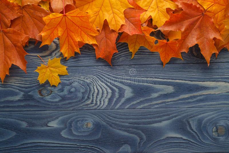 Composizione d'annata con la frutta di autunno su fondo di legno fotografie stock