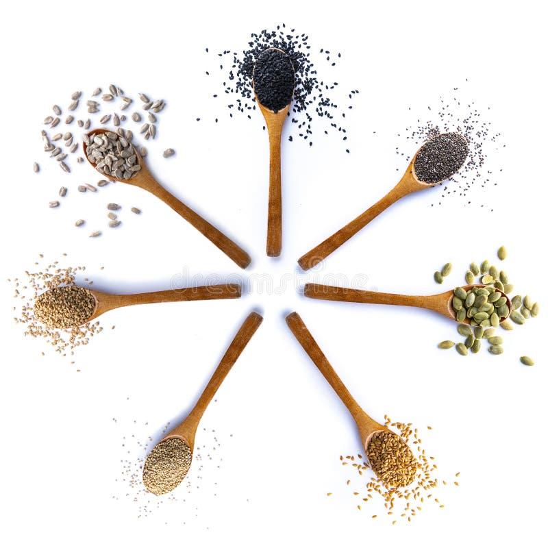Composizione dei cucchiai con i semi su fondo bianco fotografia stock