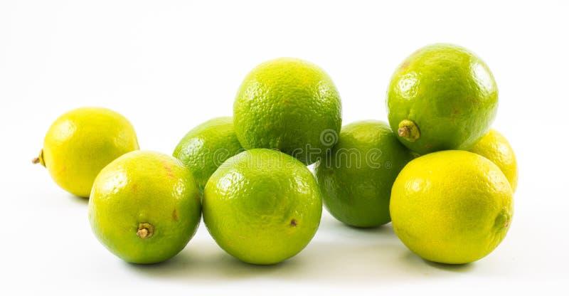 Composizione dei limoni e di una limetta gialli e verdi su un fondo bianco immagini stock