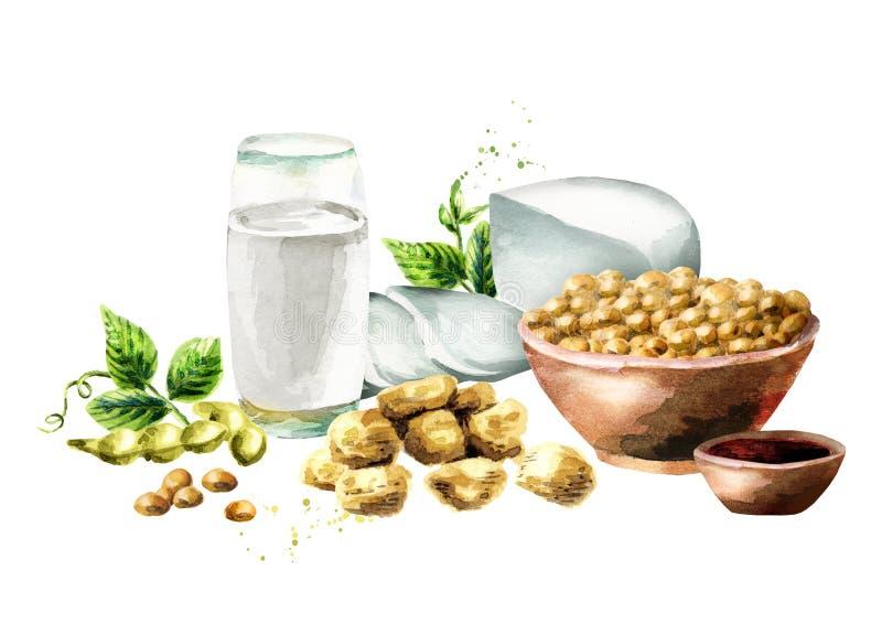 Composizione dei prodotti della soia con la soia, il latte, la carne, il tofu, la salsa e le foglie verdi fotografie stock libere da diritti