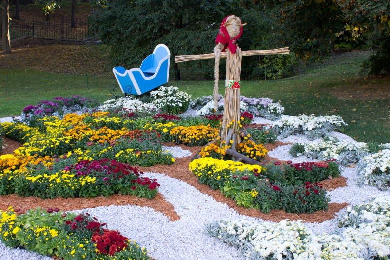 Composizione del crisantemo immagine stock libera da diritti