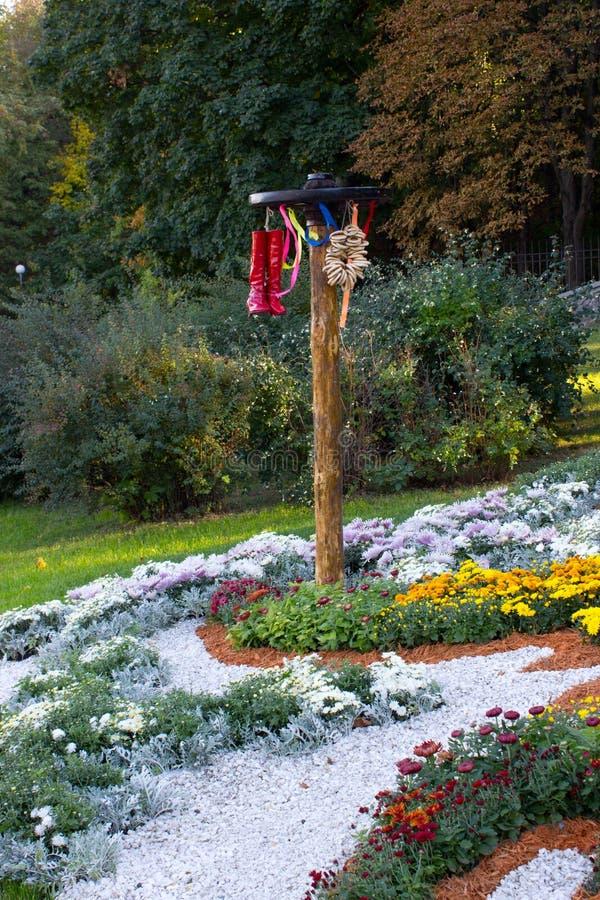 Composizione del crisantemo fotografia stock libera da diritti