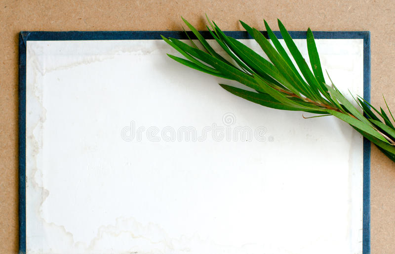Composizione della carta in bianco del cartone con fotografia stock libera da diritti