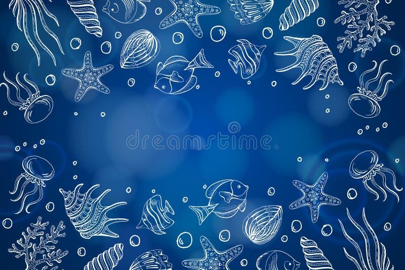 Composizione delle conchiglie, stelle marine, meduse Fondo subacqueo del mare del mondo, fondo con lo spazio della copia illustrazione vettoriale