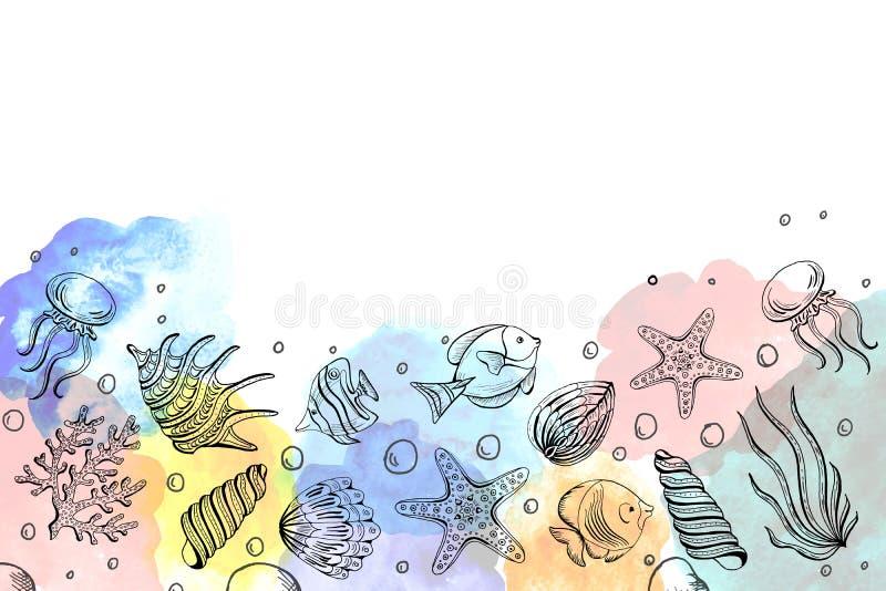 Composizione delle conchiglie, stelle marine, meduse Fondo subacqueo del mare del mondo, fondo con lo spazio della copia illustrazione di stock