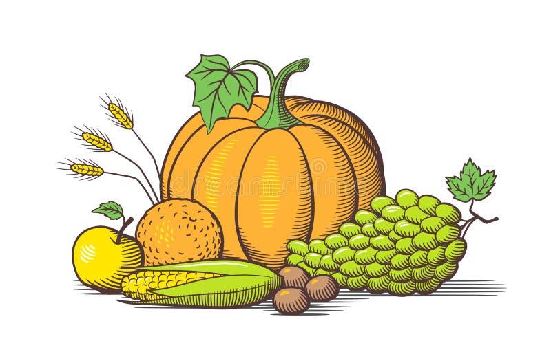 Composizione delle frutta e delle verdure Vettore stile retro colorato royalty illustrazione gratis