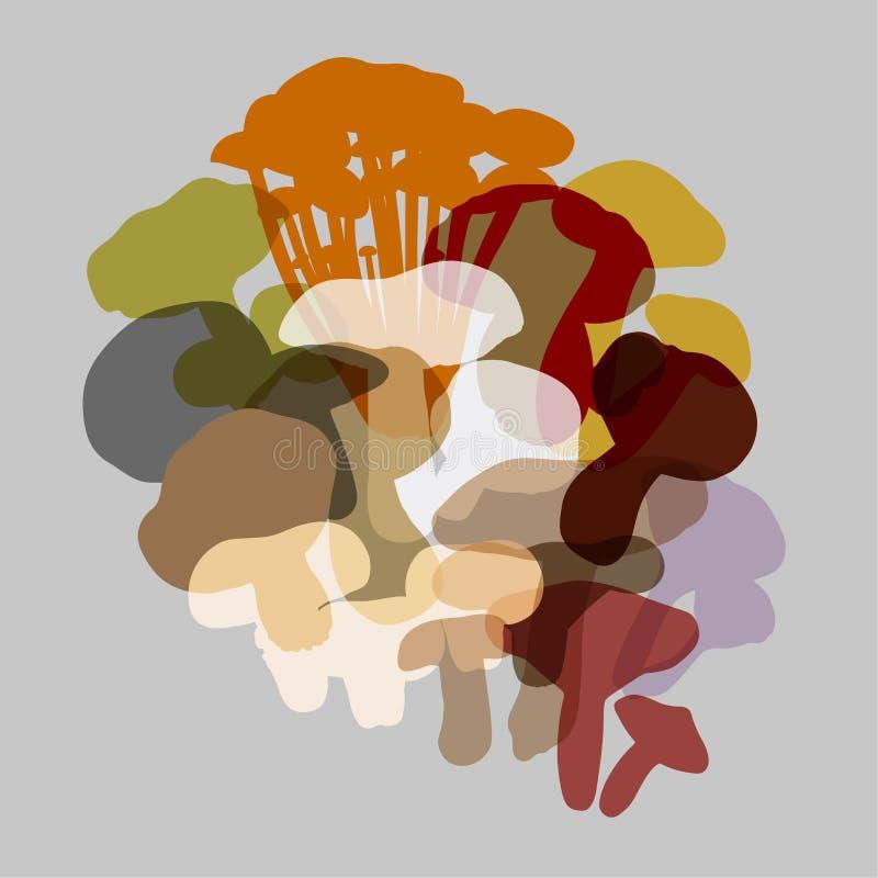 Composizione di vari funghi illustrazione di stock