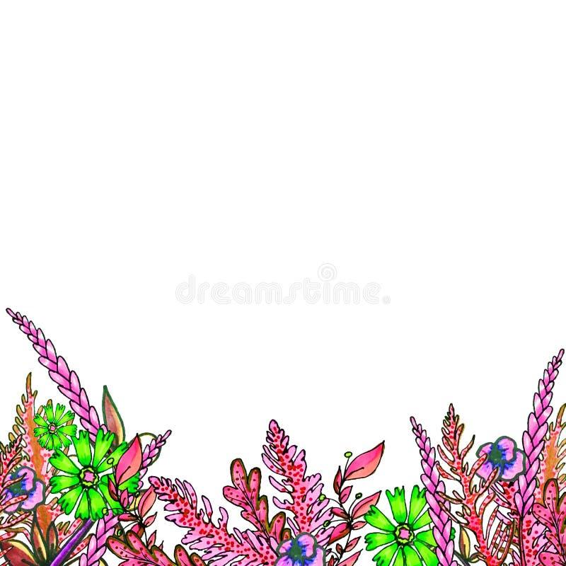Composizione dipinta degli indicatori dei fiori nei colori delicati Pagina, confine, fondo Cartolina d'auguri San Valentino, la D royalty illustrazione gratis
