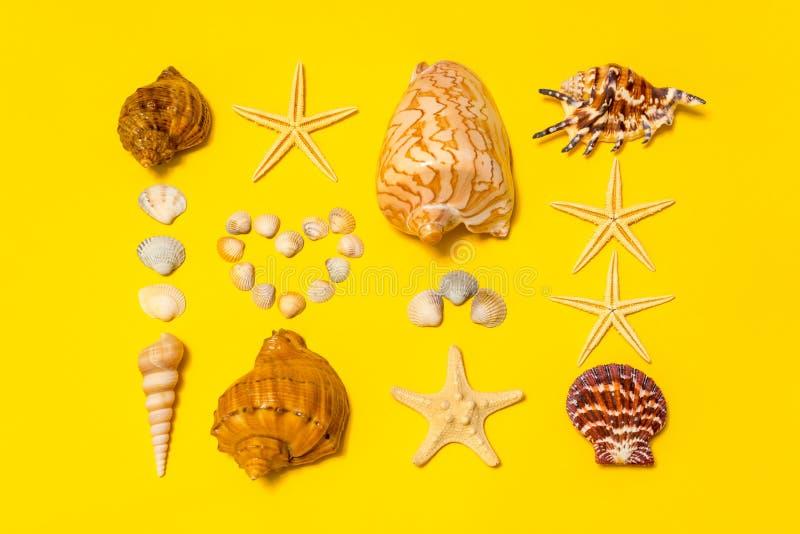 Composizione in estate Conchiglie differenti e stelle marine che si trovano sul fondo di carta giallo che simbolizza la sabbia Di fotografie stock