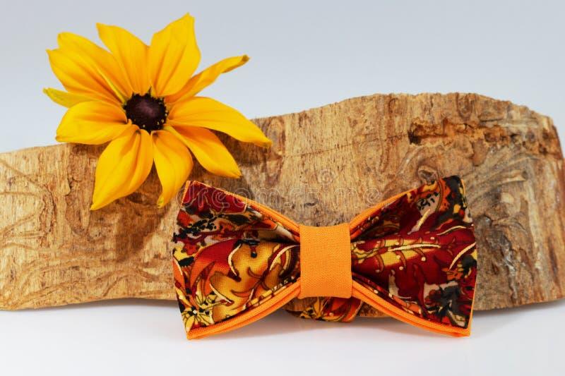 Composizione: Farfallino arancio esagerato, fiore giallo e pezzo di legname segato su un fondo bianco fotografia stock libera da diritti