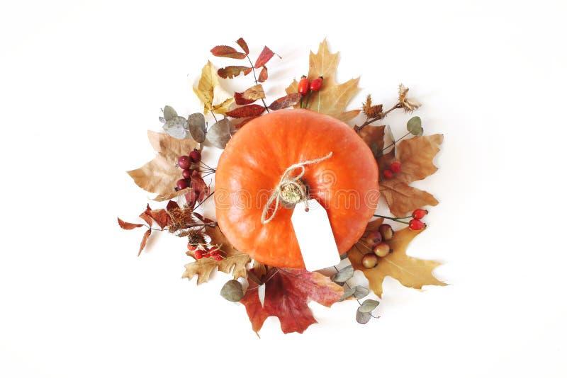 Composizione floreale in autunno con la zucca arancio Corona fatta dell'acero, delle foglie dell'eucalyptus e delle bacche asciut fotografia stock
