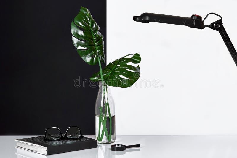 composizione Foglie verdi in bottiglia con il blocco note su fondo bianco e nero Vista frontale, spazio della copia fotografie stock libere da diritti