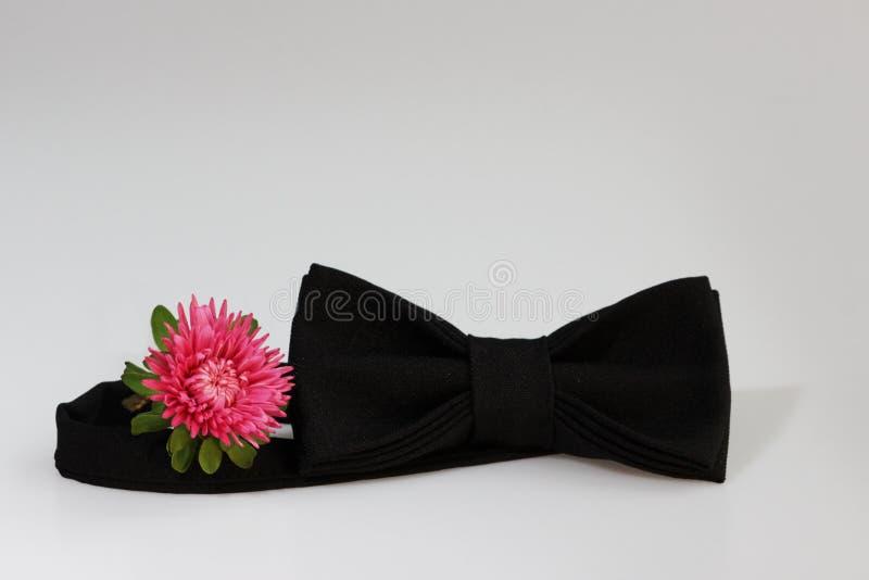Composizione: Il farfallino classico ufficiale nero esagerato ed il piccolo fiore dentellano l'aster su un fondo bianco fotografia stock libera da diritti