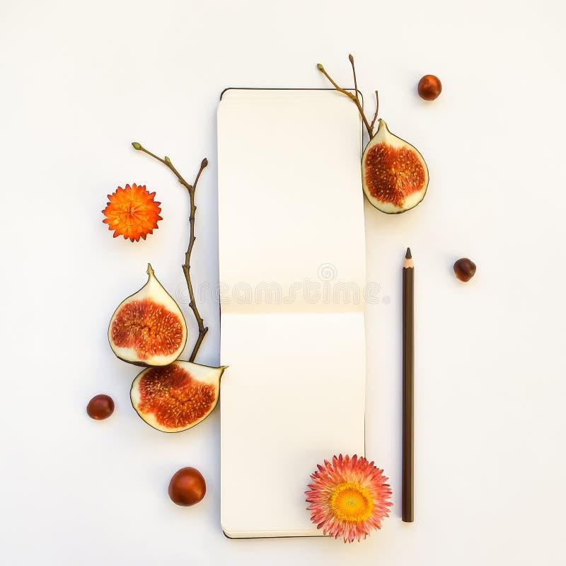 Composizione luminosa di autunno di uno sketchbook, dei fichi e dei rami di albero Disposizione piana, vista superiore fotografia stock