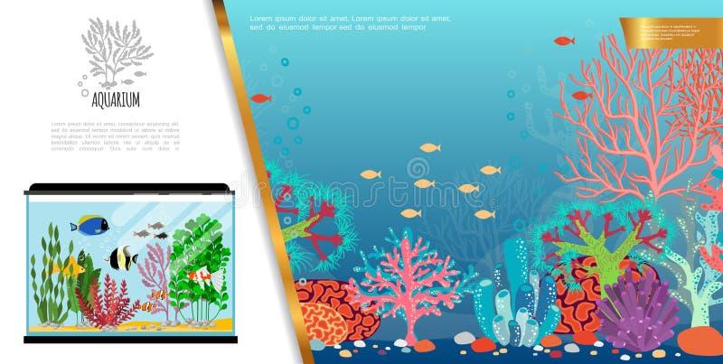 Composizione luminosa nell'acquario piano illustrazione di stock