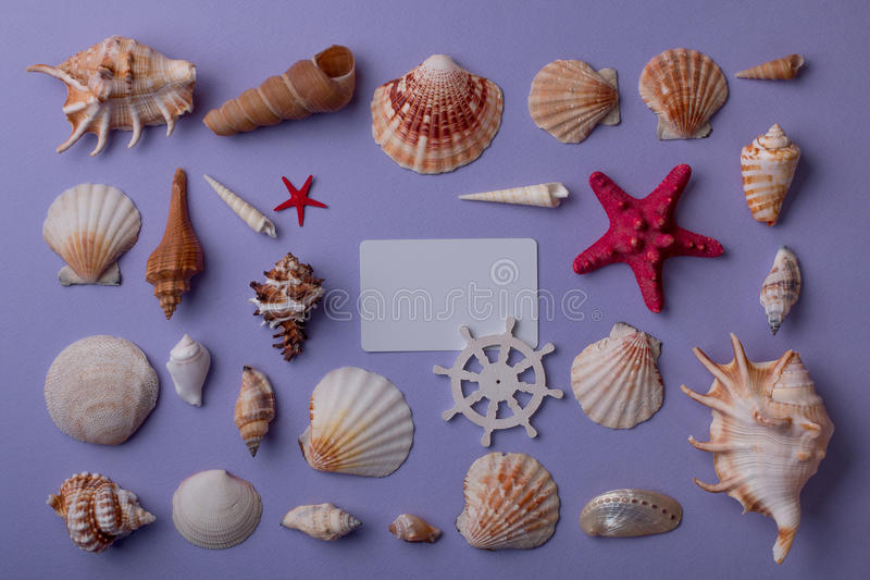 Composizione marina con la carta di regalo immagine stock