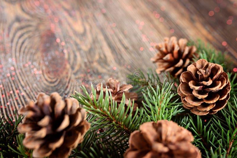 Composizione in Natale dai rami dell'abete rosso e dei coni sull'corteggiare fotografia stock libera da diritti