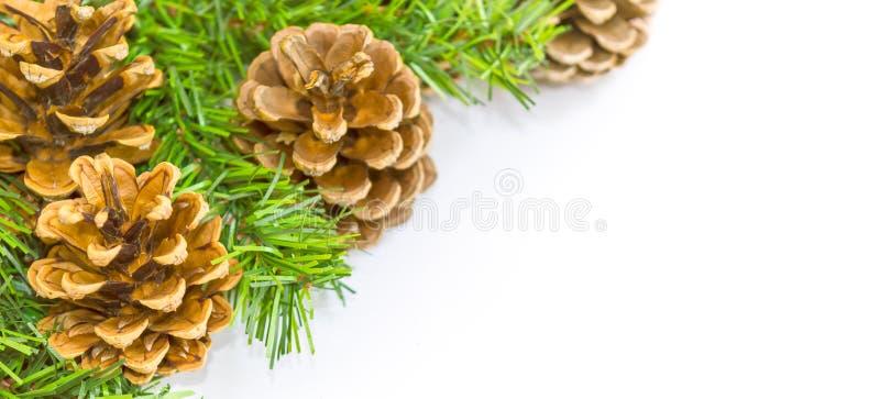 Composizione in natale Fatto del pino Priorità bassa bianca immagini stock libere da diritti