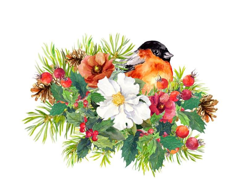 Composizione in Natale - l'uccello del fringillide, l'inverno fiorisce, albero attillato, vischio watercolor illustrazione di stock