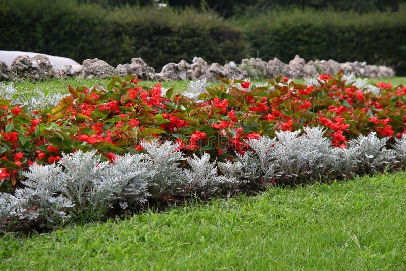 Composizione nel giardino fotografia stock immagine di - Composizione giardino ...