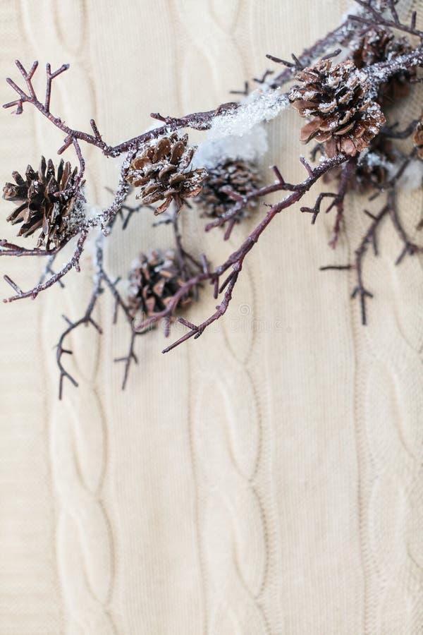 Composizione nel nuovo anno ed in Natale Chiuda sui rami della neve con i coni su fondo bianco tricottato con lo spazio della cop fotografia stock