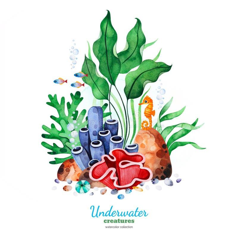 Composizione nell'acquerello con i coralli multicolori, le conchiglie, le alghe e l'ippocampo illustrazione di stock