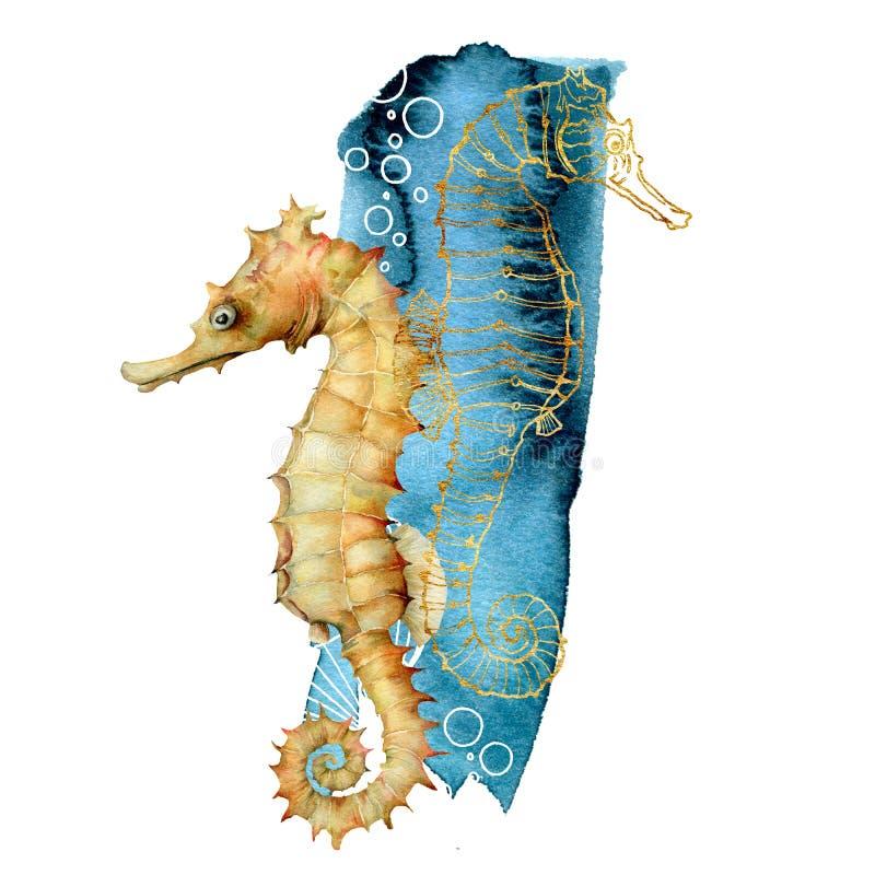 Composizione nell'ippocampo dell'acquerello Animali subacquei dipinti a mano isolati su fondo bianco Linea arte dorata acquatica illustrazione vettoriale