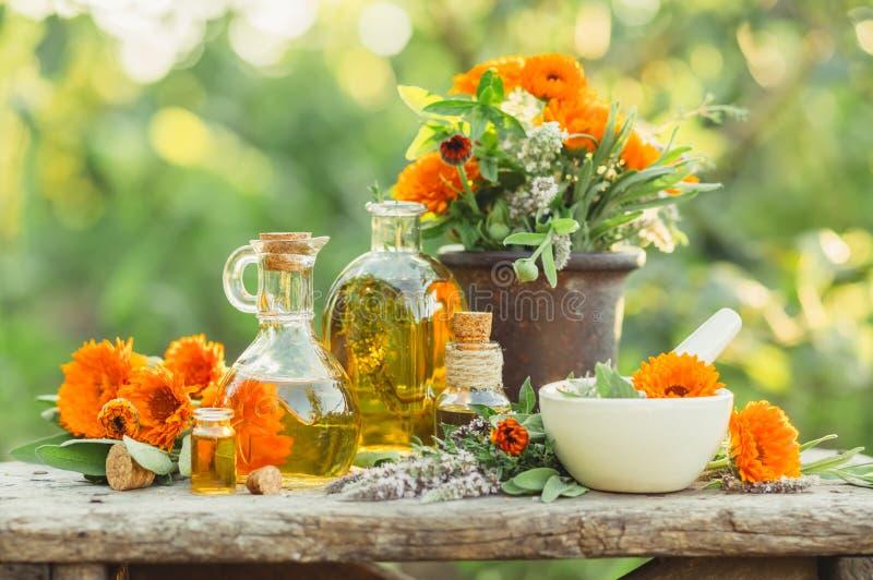 Composizione nella stazione termale con le erbe fresche, la calendula ed i tipi differenti di oli fotografie stock libere da diritti