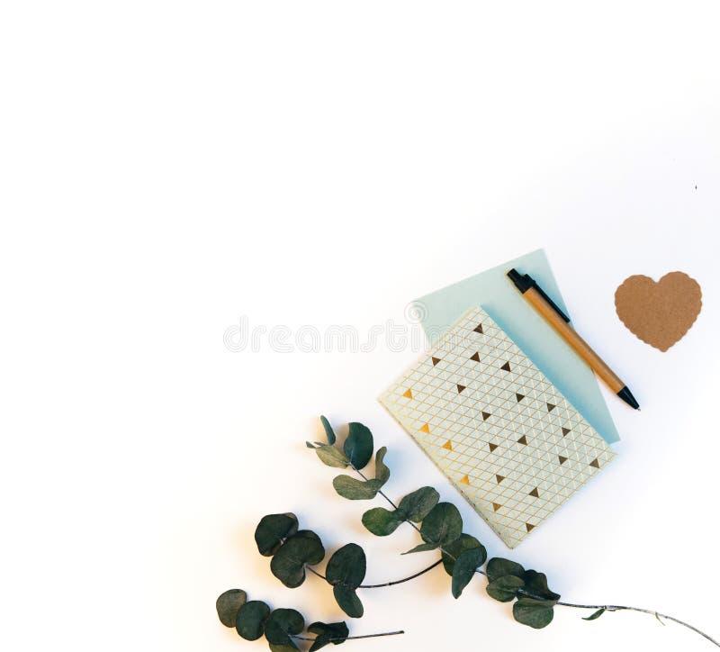 Composizione piana in disposizione con il taccuino e le foglie verdi fotografia stock