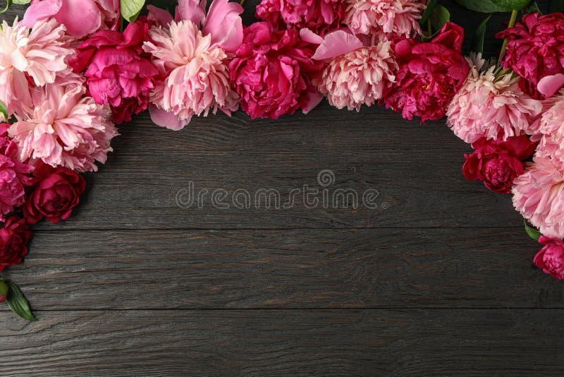 Composizione posta piana con le belle peonie su fondo di legno fotografia stock