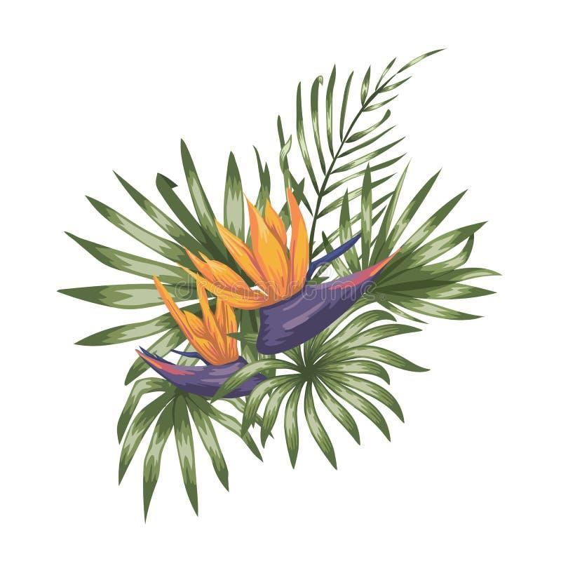 Composizione tropicale di vettore dei fiori di strelizia illustrazione di stock