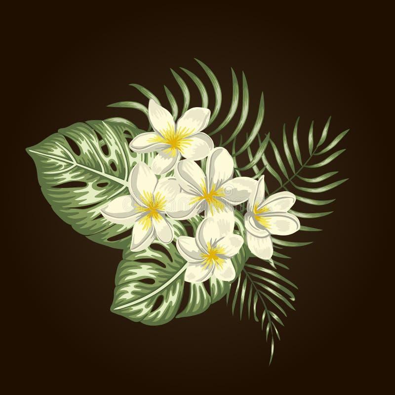 Composizione tropicale di vettore dei fiori tropicali illustrazione vettoriale