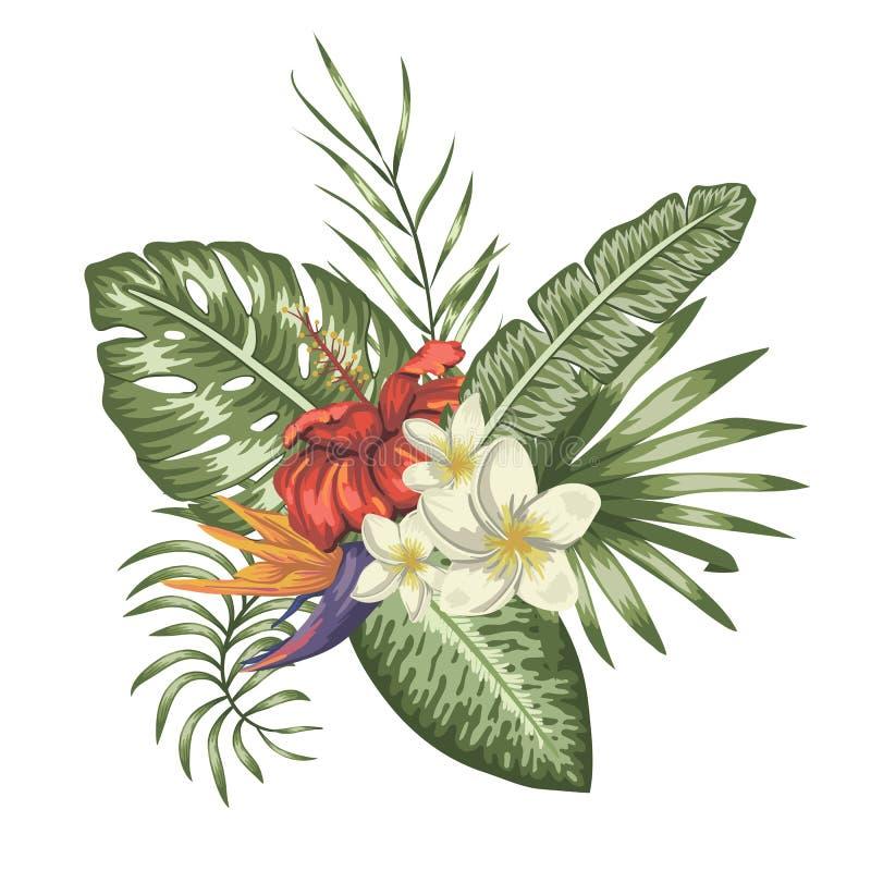 Composizione tropicale di vettore dei fiori tropicali illustrazione di stock