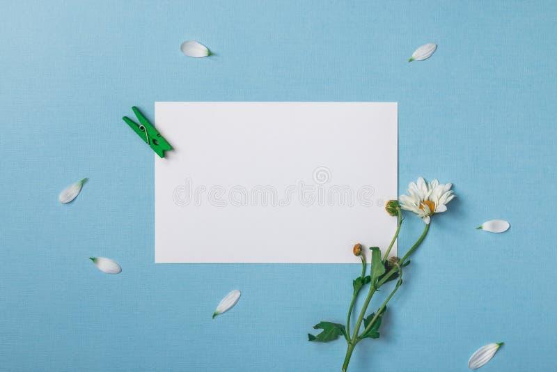 Composizione in vista superiore della primavera immagini stock