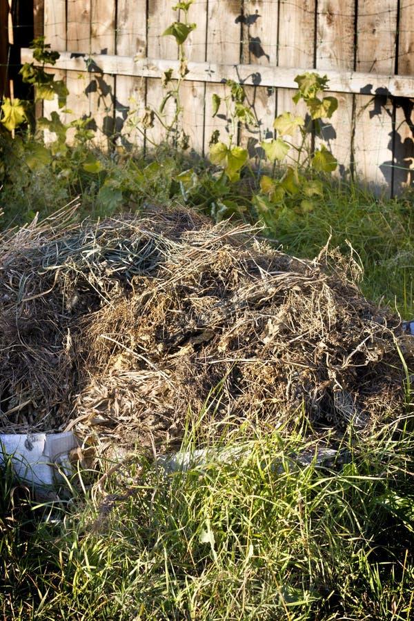 compost stock afbeelding