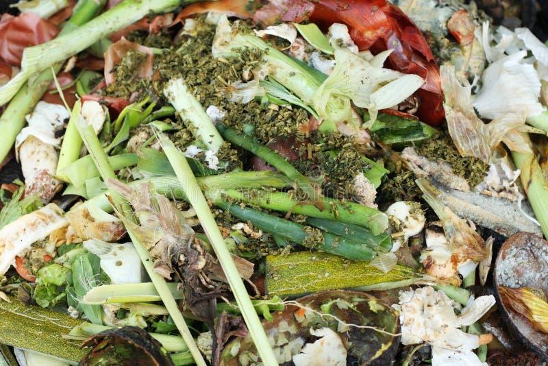 Download Compost stock image. Image of onion, compost, leek, peel - 9203643