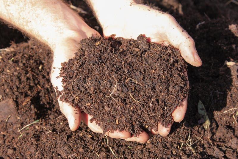 Compost d'engrais de cheval photographie stock libre de droits