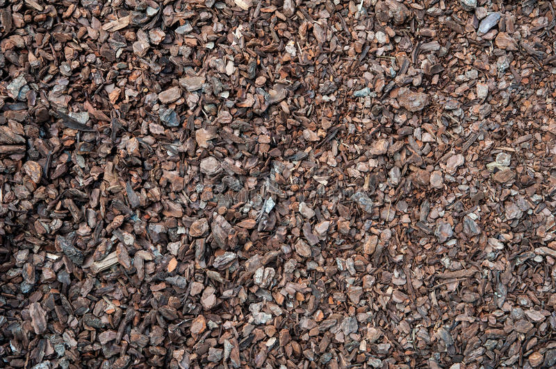 Compost mulch fragment. Earth ground covered with compost mulch fragment stock images