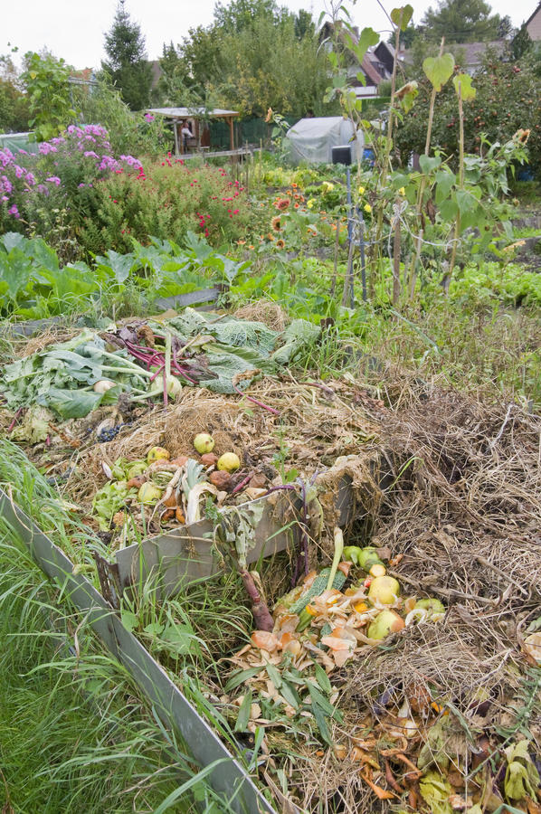 Download Compost Pile stock image. Image of remaining, plant, heap - 18835049