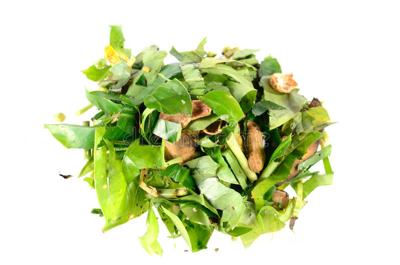Download Compost Plant Organic Fertilizer Stock Photo - Image: 33716812
