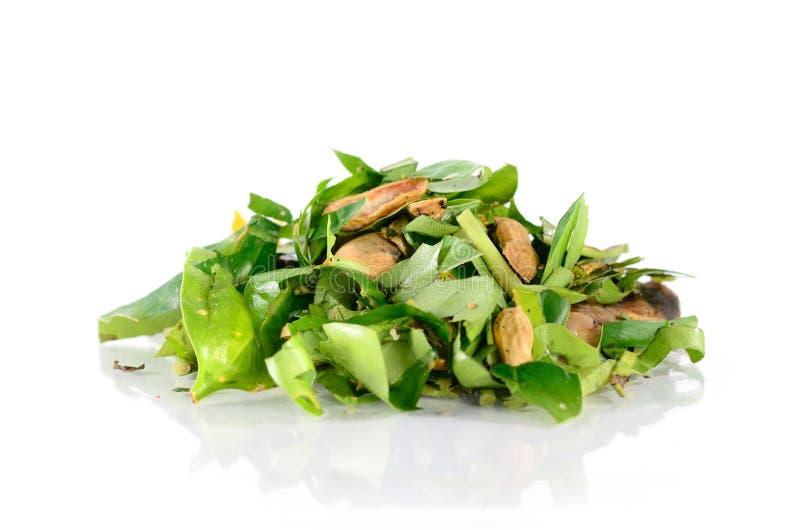 Download Compost Plant Organic Fertilizer Stock Photo - Image: 33716826