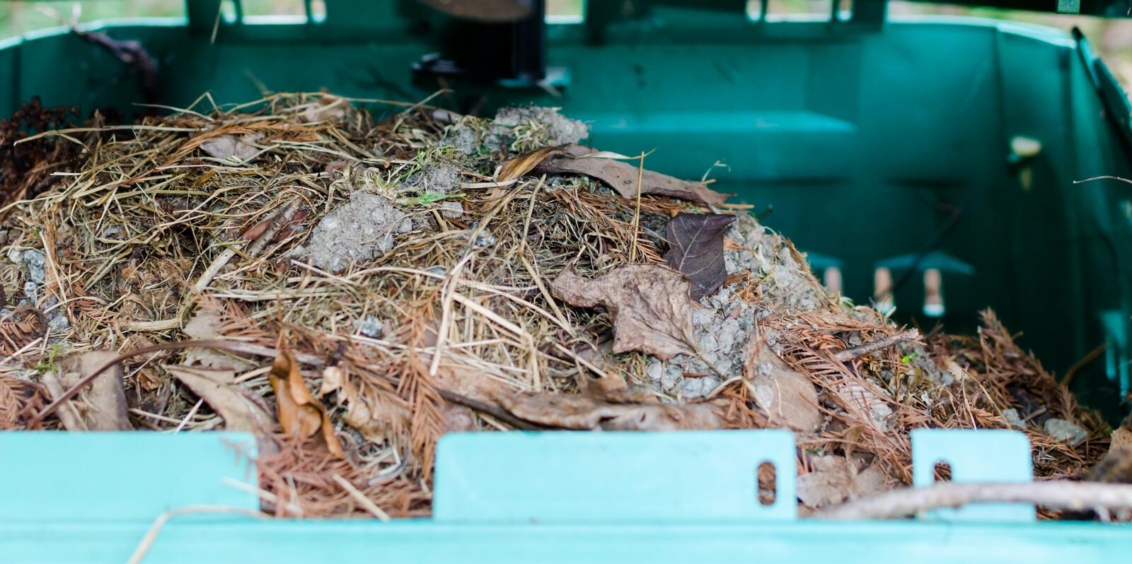 Compost in plastic tank in botanical garden in Poland, Europe. Close up stock photos
