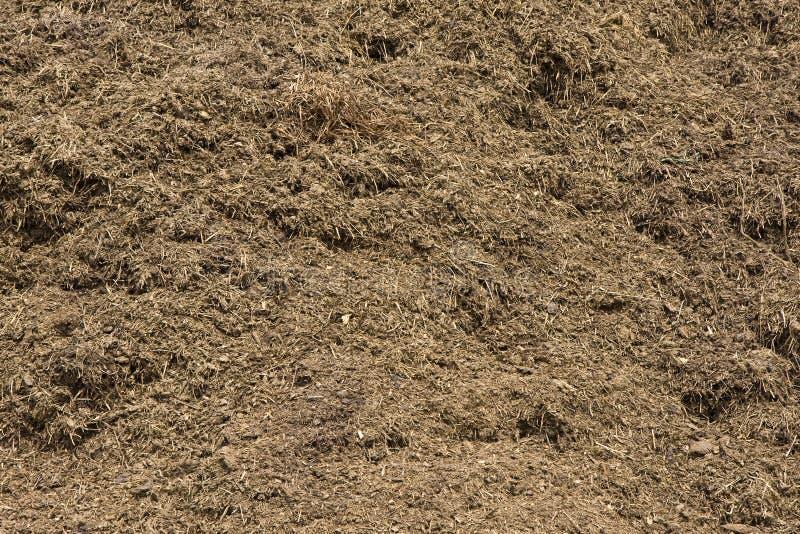 Compost riche et organique photo libre de droits