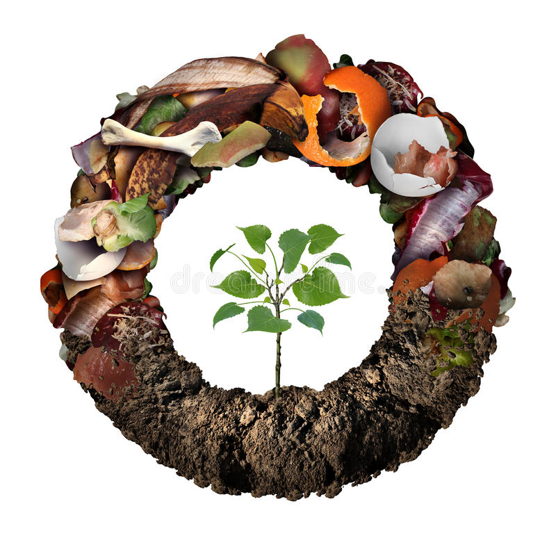 Composte Life Cycle Symbol. And a composting stage system concept as a pile of rotting kitchen fruits egg shells bones and vegetable food scraps shaped as vector illustration