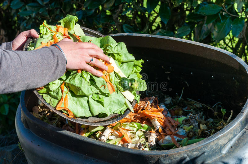 Composting. The Kitchen Waste in a container stock photography