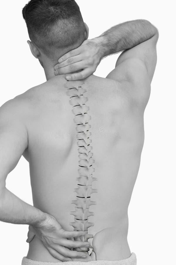Composto di Digital della spina dorsale Highlighted dell'uomo con dolore alla schiena fotografia stock